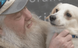 Local Shelter Helps Broken-Hearted Disabled Man Find A New Best Friend