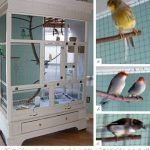 We have plenty of projects for dogs, cats, and even for bunnies, but finally here's one for the birds — an aviary created by using a old