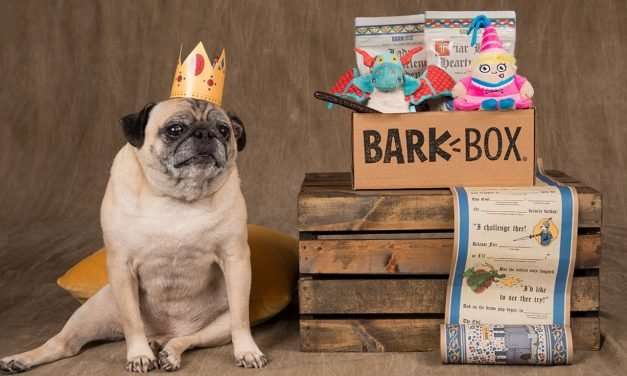 I tried BarkBox to find out what dog owners like about it, and now I get why it has over 500,000 monthly subscribers