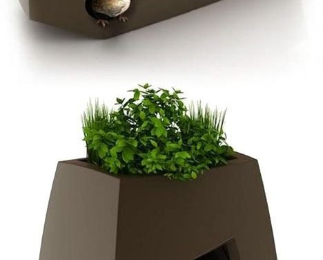 Pet Planters.  I wonder if I can get one big enough for a Giant German Shepherd…