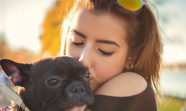 Sponsored: Millennials plan to spend big on holiday gifts — for their pets
