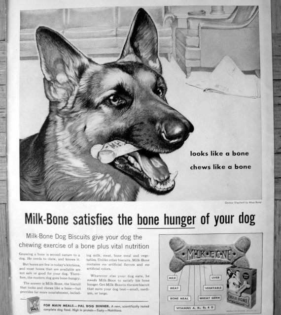 1959 German Shepherd – Milk Bone Dog Biscuits Original 13.5 * 10.5 Magazine Ad