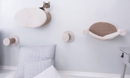 15 Interior Designs for Pet Lovers