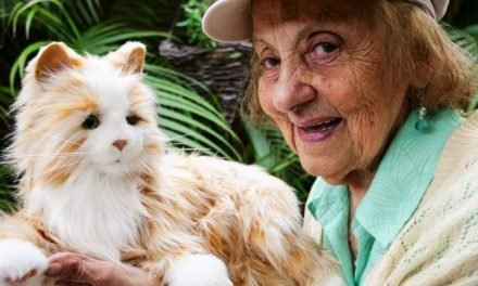 Robotic puppies and kittens trigger happy memories in dementia patients