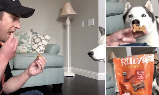 A Treat You Can SHARE with Your Dog? These Organic Baked Treats Taste Amazing to Pups & People