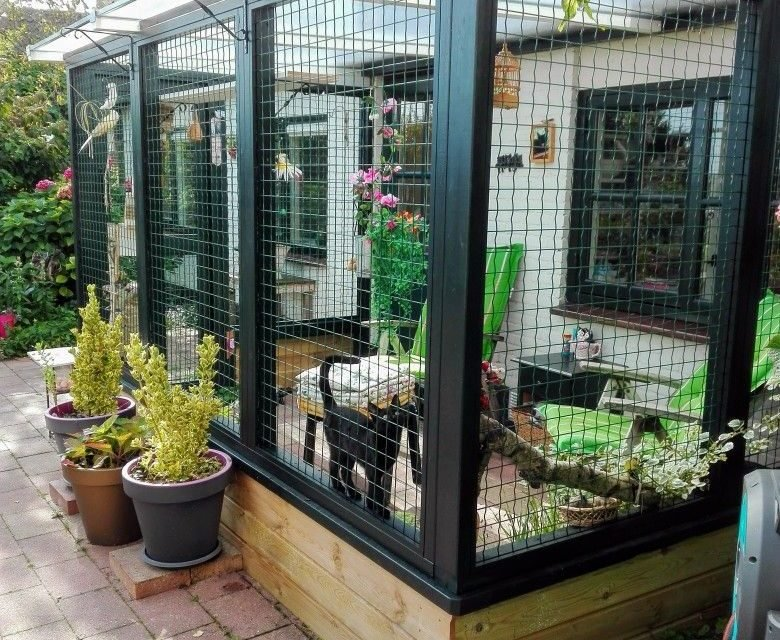 A beautiful catio for indoor cats.