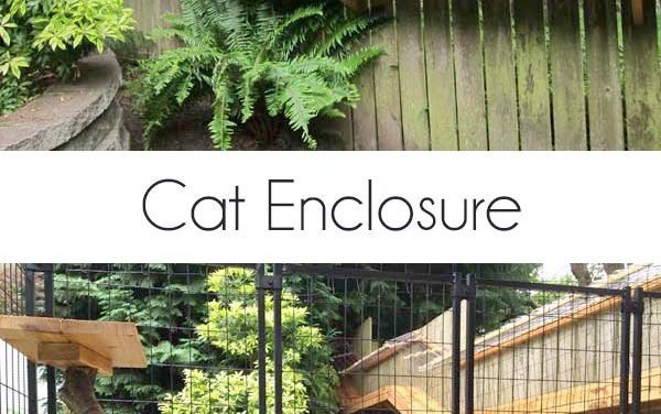A reader built this cat enclosure inspired by my own DIY cat enclosure. It turned out fantastic.