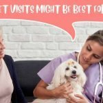 Pros and Cons to This New Trend in Veterinary Medicine