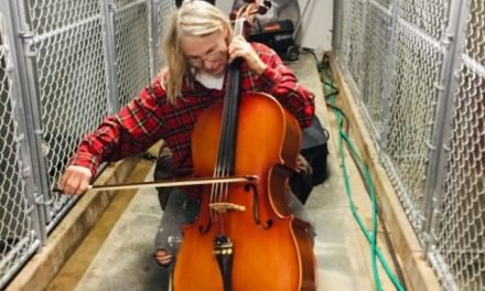 Nebraska Cellist Gets Surprising Reaction From Shelter Dogs