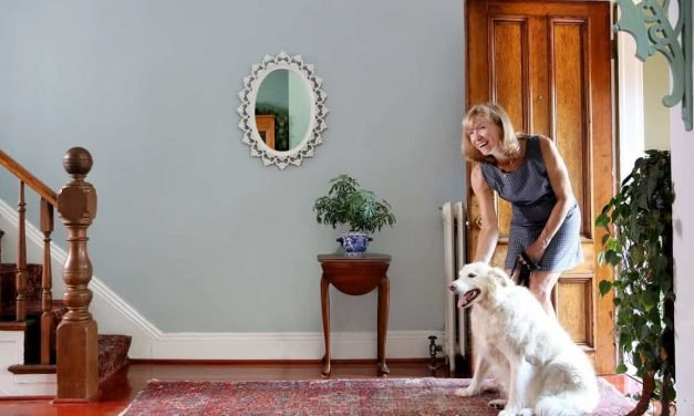 6 Smart Home Devices for a Healthy and Happy Pet