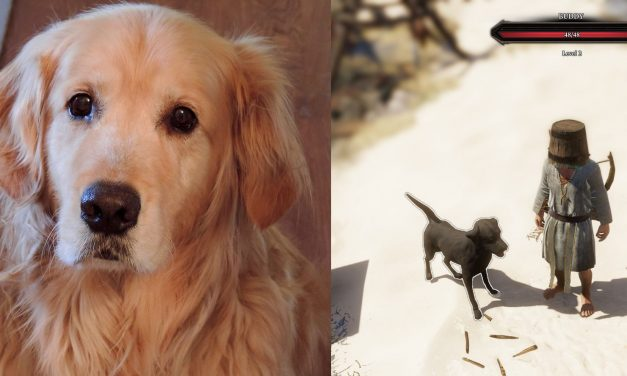 The pets immortalised in videogames by their developer owners