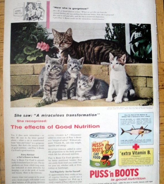 1956 Puss'n Boots Cat Food- Kittens Chandoha Photo-Original 13.5 * 10.5 Magazine Ad-Pet Food