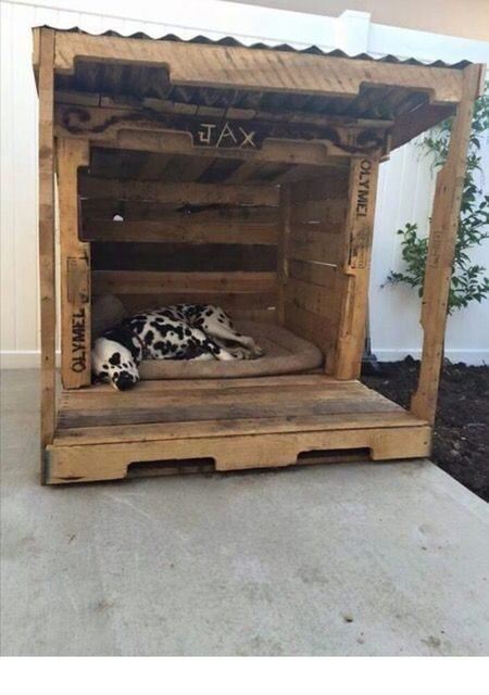The maxx dog house #customdoghouses