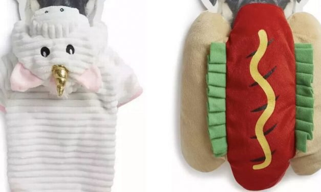 Primark launches adorable new pet clothing line – and prices start from £7