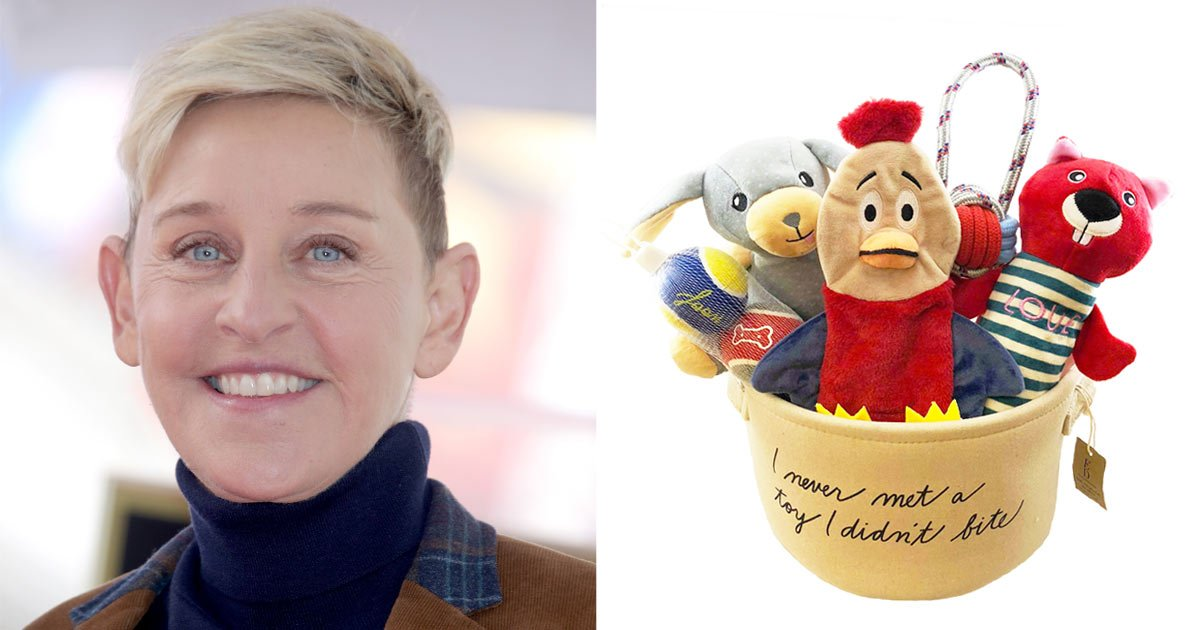 These Adorable Dogs Toys Are Ellen DeGeneres-Approved — and You Can Get 7 for Less Than $20