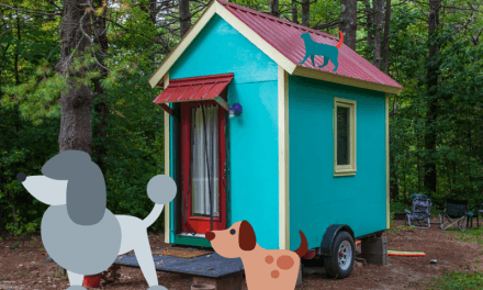 7 Tips For Keeping Cats and Dogs in a Tiny House