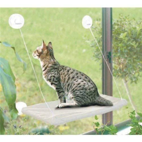 Beds & Furniture : PETPAWJOY Cat Bed, Cat Window Perch Window Seat Suction Cups Space Saving Cat Hammock Pet Resting Seat Safety Cat