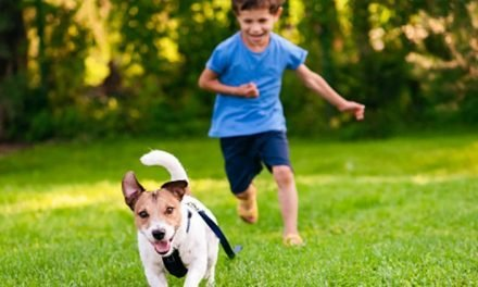 There are too many people giving up pets they 'gifted' their child