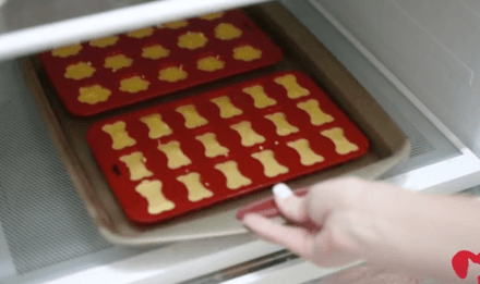Your Dog Will Thank You For These Amazing Homemade Chicken Jello Snacks
