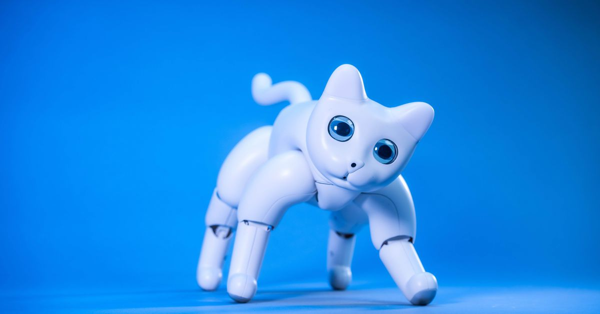 There's a robot cat you can back on Kickstarter