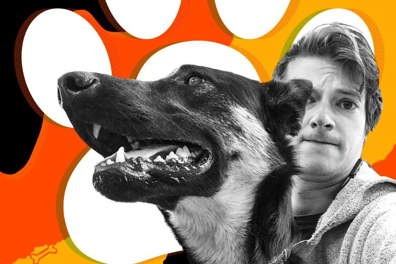What I Learned From More Than a Year as Slate's Pet Advice Columnist