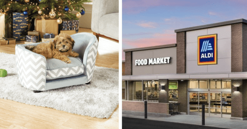 Aldi Releases Tiny Dog Sofas That Every Pup Deserves