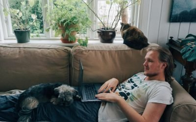 We Asked Scientists If Our Pets Love Us Being Home All the Time