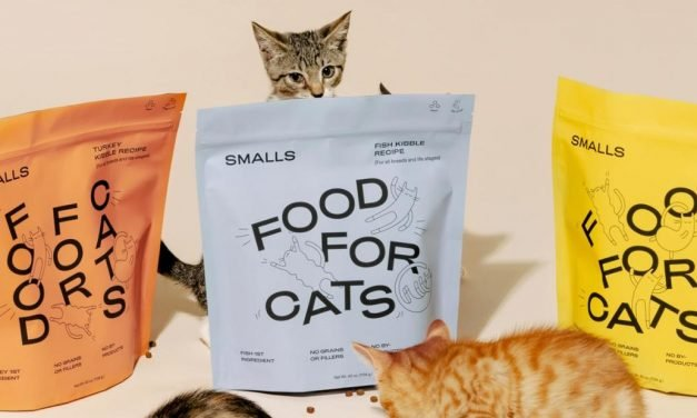 Make sure your pets stay pampered with these food delivery services