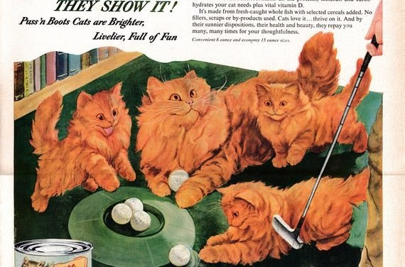 1953 Persian Cat Kittens -Puss'n Boots Cat Food Red  Original 13.5 * 10.5 Magazine Ad-Pet Food