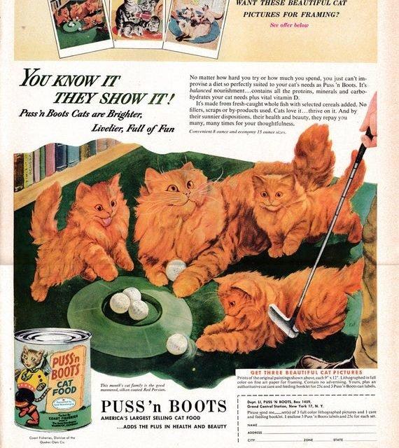 1953 Persian Cat Kittens -Puss'n Boots Cat Food Red  Original 13.5 * 10.5 Magazine Ad-Pet Food