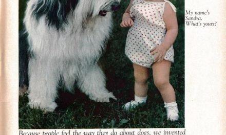 1968 Sheep Dog + Tiny Girl -Ken-L Ration Burger Dog Food-Original 13.5 * 10.5 Magazine Ad-Pet Food