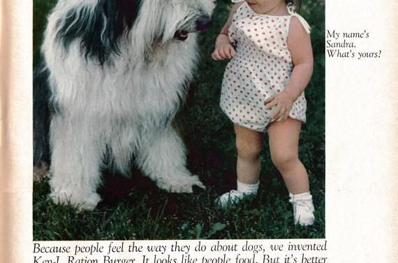1968 Sheep Dog + Tiny Girl -Ken-L Ration Burger Dog Food-Original 13.5 * 10.5 Magazine Ad-Pet Food