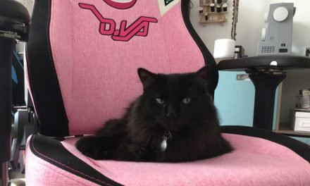 I Asked Cat Behavior Experts Why My Cat Is Obsessed With My Ridiculous Gamer Chair