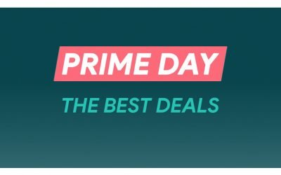 Amazon Prime Day Pet & Dog Deals (2020): Early Dog DNA Test, Cat Tree, & Pet & Dog Bed Sales Published by Spending Lab