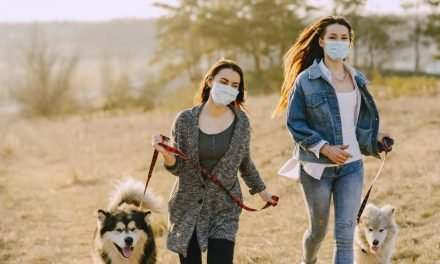 How to Care for a New Animal Companion 