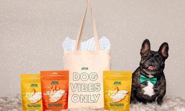 Holiday Gift Guide 2020: The Best Wellness Gifts For Pets (And Pet Lovers)
