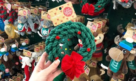 50% Off Holiday Pet Toys, Treats, & Accessories at Petco