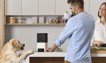 Keep an eye on your furry friend with these pet cameras on sale