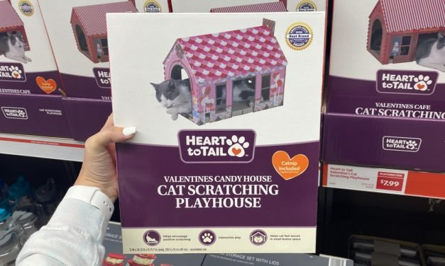 Valentine Cat Scratching Houses Only $7.99 at ALDI