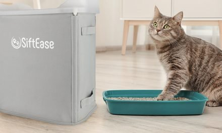 These 10 cat accessory deals should make your feline and you happy