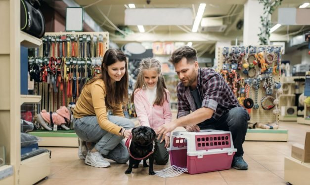 What you need to know to open an 'everything for your dog' store